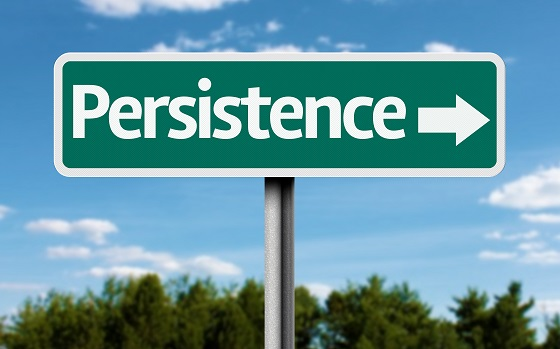 persistence_assessment_collection